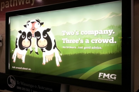 FMG Airport Signage
